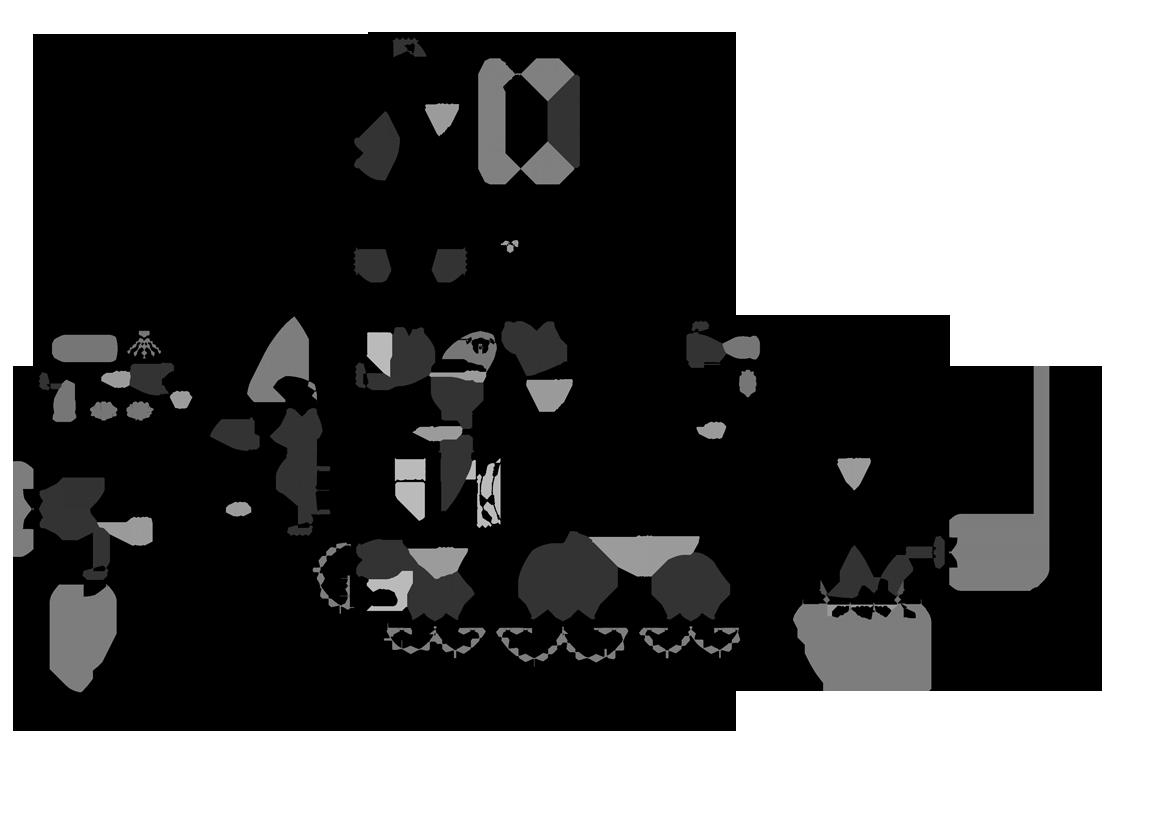 projet-extension-1-avant
